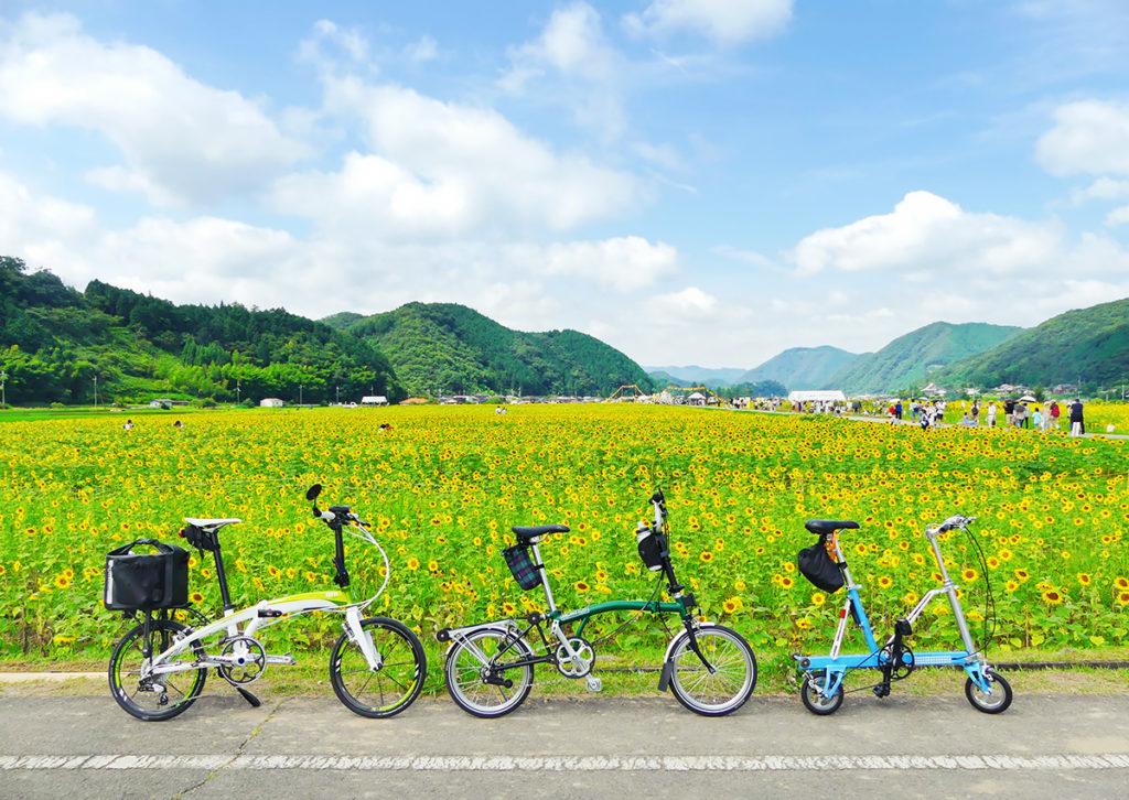 ホイールサイズが異なる3台のミニベロ・折りたたみ自転車を並べた写真
