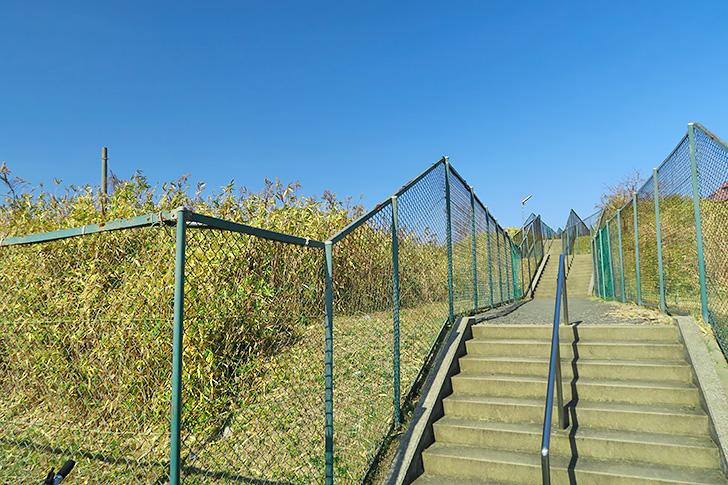 長い階段がある風景