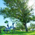 夏のサイクリングの風景