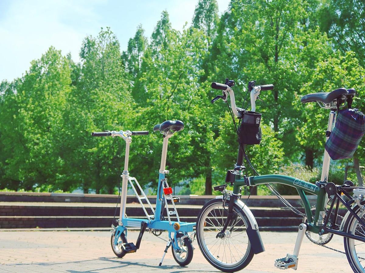 滋賀県・マキノのメタセコイア並木道の風景と2台の自転車