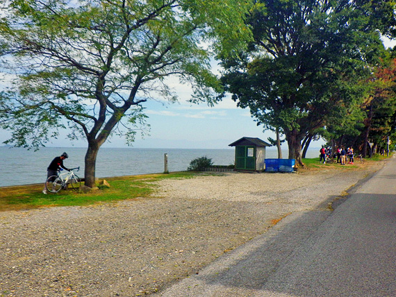 滋賀県彦根市の琵琶湖畔の風景。木立の下に、自転車を降りて休憩しているサイクリンググループの姿がある。