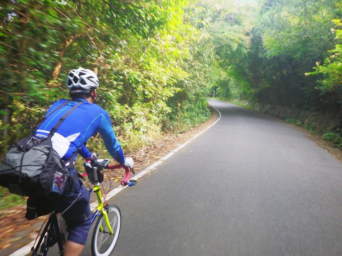 「水ヶ浜」付近の道路を自転車で走る友人の姿を捉えた写真。周囲には木々が生い茂り、「緑のトンネル」のようになっている。