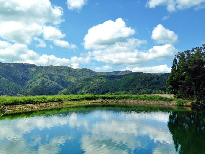 緑の草むらに囲われた貯水池。上には白い雲が浮かぶ青空が広がっていて、貯水池の水面にも白い雲と青空が映っている。