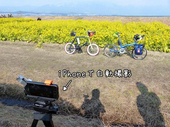菜の花畑をバックに手前には2台の自転車、「ニューワールドツーリスト」と「コメットR」が停められていて、さらに手前には三脚に固定されたアイフォンが置かれている。