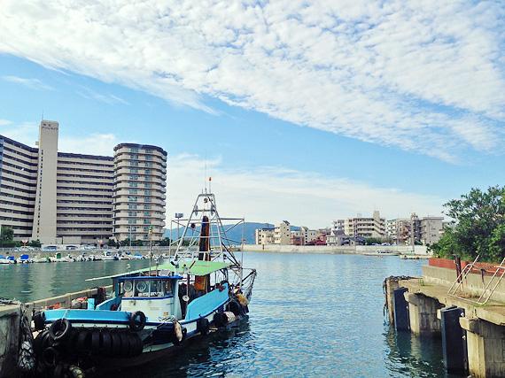 兵庫県「明石港」の風景。堤防や桟橋がある入り組んだ形の港で、あちこちに漁船が停泊している。