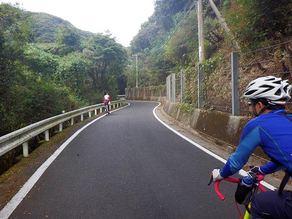 淡路島・由良の山道の写真。少し先に、1台のロードバイクが走っている。