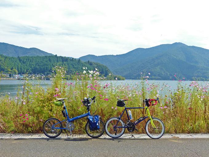 琵琶湖の北部「海津大崎」付近から見た風景の写真。道路脇にピンク色のコスモスの花が咲いていて、そのむこうに琵琶湖の青い水面が見える。手前には筆者の自転車バイクフライデーの「ニューワールドツーリスト」と、友人の自転車「コメットR」が停められている。
