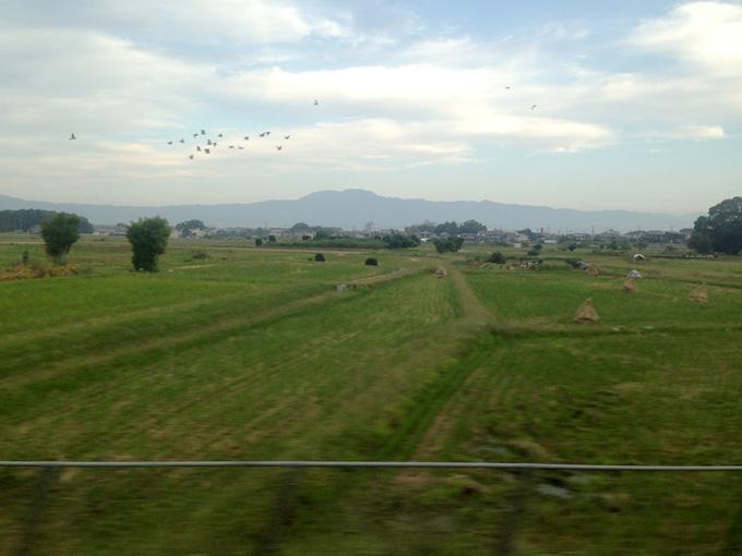 滋賀県に向かう電車の車窓から見た朝の風景。緑の草が生える田園風景で、遠くには山が見える。空には鳥の群れが飛んでいる。