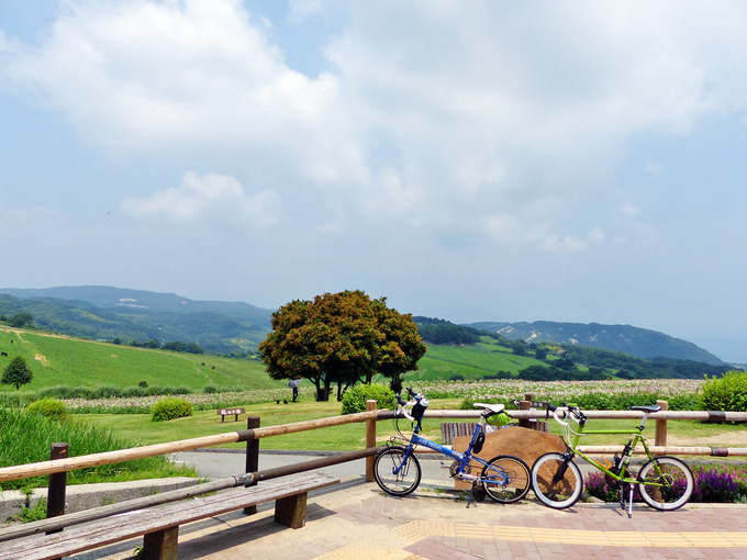 木製の柵の前に停められた青い自転車と緑色の自転車。むこうには、花畑と緑色の草原が見える。