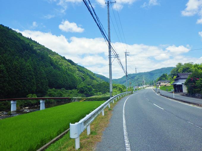 真っ直ぐな道路、その脇には緑色の田んぼがあり、そのむこうを川が流れている。