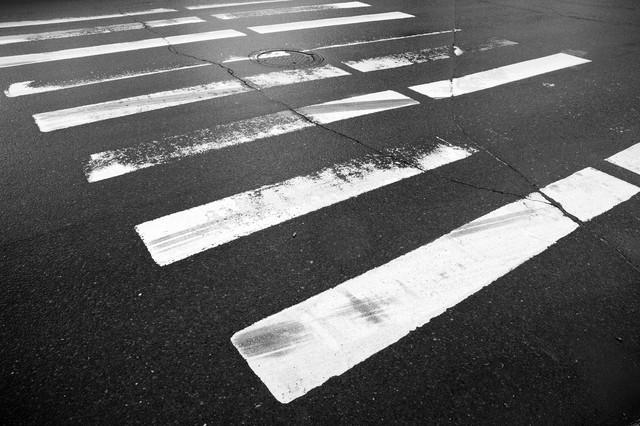 道路上の異素材部分の一例として、横断歩道の写真。雨で濡れた横断歩道のいかにも滑りやすそうな様子が判る。