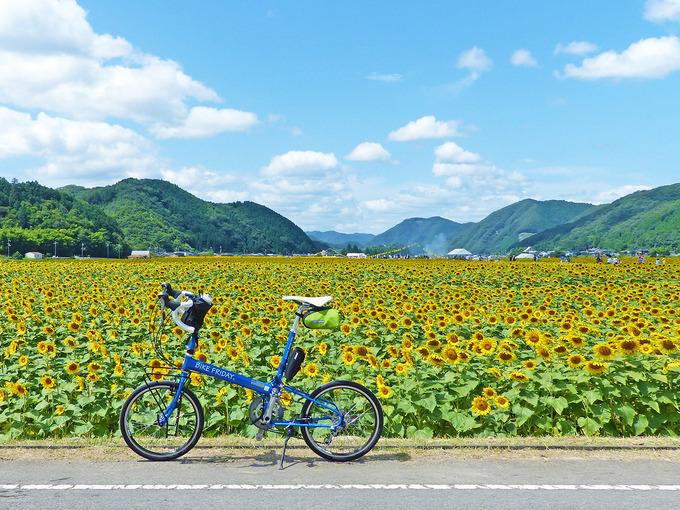 青空に白い雲が浮かび、その下に広がる一面黄色のひまわり畑。そんな景色を背景に、手前に停められた一台の青い自転車「バイクフライデーのニューワールドツーリスト」の写真。