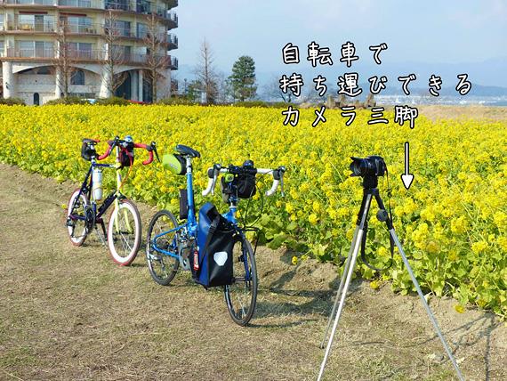 菜の花畑の中の小道に手前には2台の自転車、「ニューワールドツーリスト」と「コメットR」が停められていて、その横には自転車で持ち運びできる小型の三脚が立てられている。三脚にはカメラが固定されている。