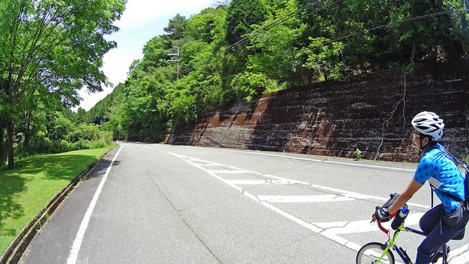 山道の写真。急な上り坂で、左右には緑色の草木が見える。