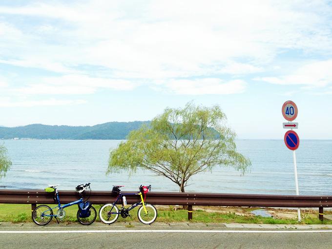 滋賀県近江八幡市の琵琶湖湖岸の「宮ヶ浜」の写真。ガードレールのむこうに柳の木が立っている。そのむこうには琵琶湖が広がっている。