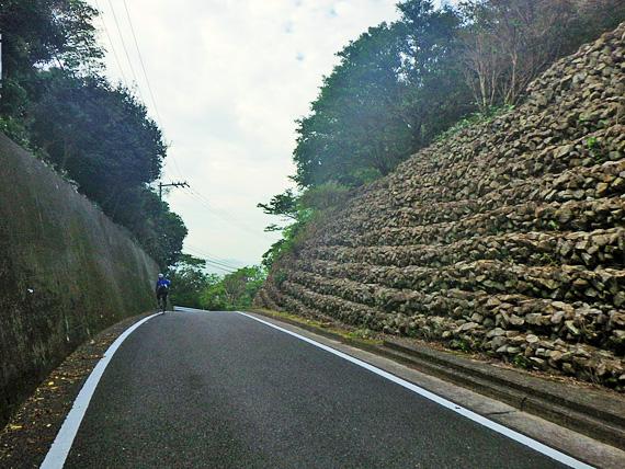 淡路島・由良の山道の写真。峠を越えるところで、その先は下り坂になっていて景色が開けている。