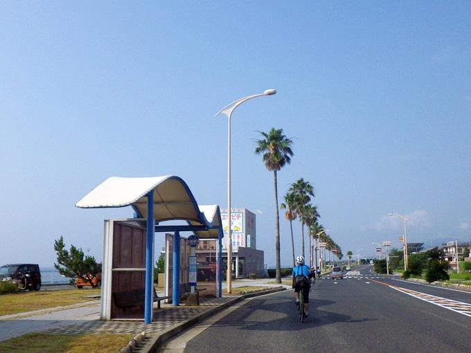 海岸線に沿ってゆるやかに曲がっているアスファルトの道を友人が乗った自転車が走ってゆく。道路脇には背の高い椰子の木が立ち並び、背景は雲一つ無い青空。