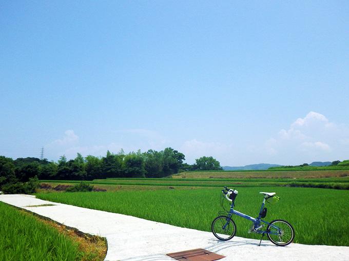 山の斜面に作られた棚田の中の小道に、青い自転車、バイクフライデー「ニューワールドツーリスト」が停められている写真。