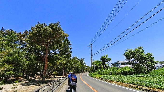 淡路島・慶野松原付近の写真。道路の左側に、たくさんの松の木が立ち並ぶ「松原」が広がっている。