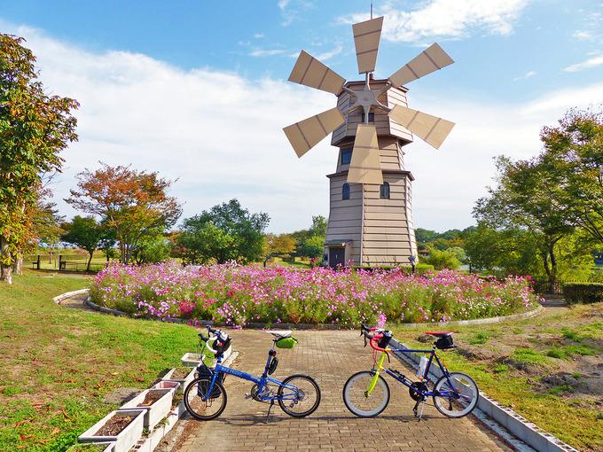 滋賀県高島市にある道の駅「しんあさひ風車村」の風景。青空の下に大きな白い風車があり、その下にはコスモスの花が咲く花壇がある。花壇の前にはバイクフライデーの折り畳みミニベロ「ニューワールドツーリスト」とフジ「コメットR」が停められている。