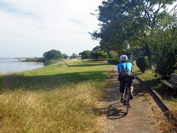 滋賀県高島市新旭の湖岸沿いの小道の風景。タイルが敷き詰められた遊歩道で、ちょうど自転車1台が通れるくらいの小さな道が続いている。