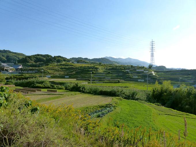 棚田がある風景の写真。