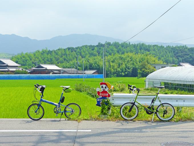 道路脇に止められた青い自転車と緑色の自転車。背景には稲苗が植えられたばかりの緑色の田んぼが広がっている。
