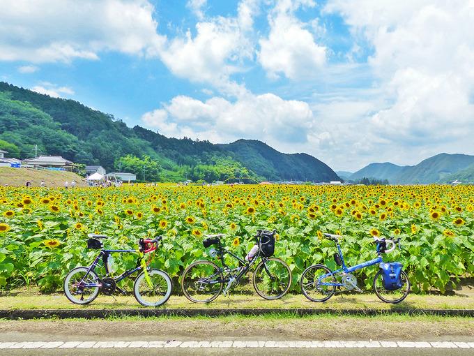 兵庫県・佐用町の「ひまわり畑」の風景。青空と白い雲の下、見渡す限り黄色い「ひまわりの花」が広がっている。手前には3台のミニベロ(自転車・小径車)が並べて置かれている。