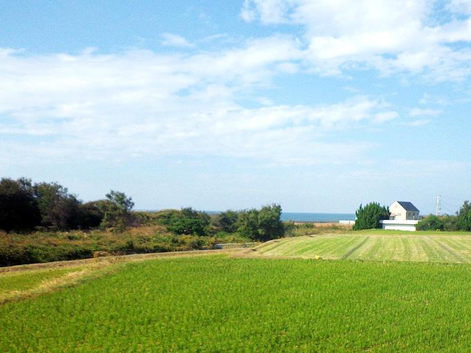 淡路島の西側の農地の写真。畑のむこうに青い海が見える。