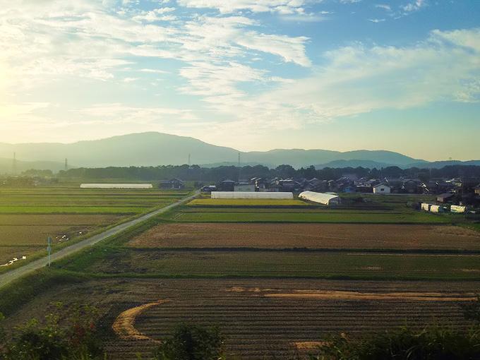 JR湖西線の車窓から見た夕方の田舎の風景。夕方の暖かな光の下に田畑のある風景が続いている。