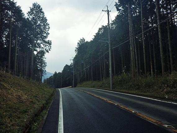 京都市内の大原北部の国道367号線の道路の写真。両側に木々が立ち並んでいる。