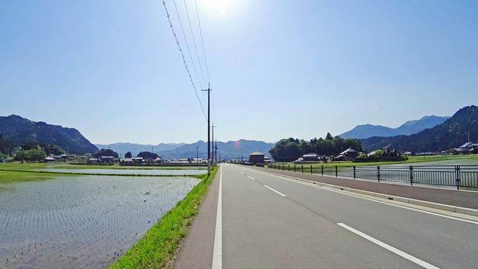 田舎道の風景。道路の両側に、田んぼが広がっている。稲苗が植えられたばかりで、鏡のような水面に小さな稲苗が並んでいる。