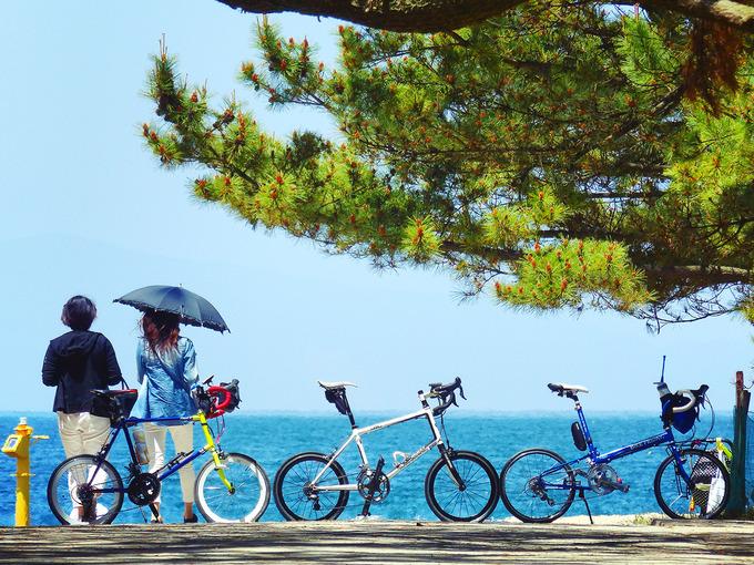 「慶野松原」の松林の中から、海水浴場のほうを見通した写真。青い海と重なるようにして、3台のミニベロが見える。