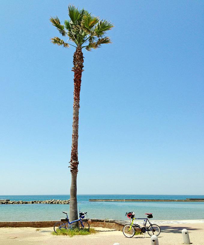 淡路島・多賀の浜海水浴場の写真。白い砂浜に立つ椰子の木の下に、2台のミニベロが停められている写真。