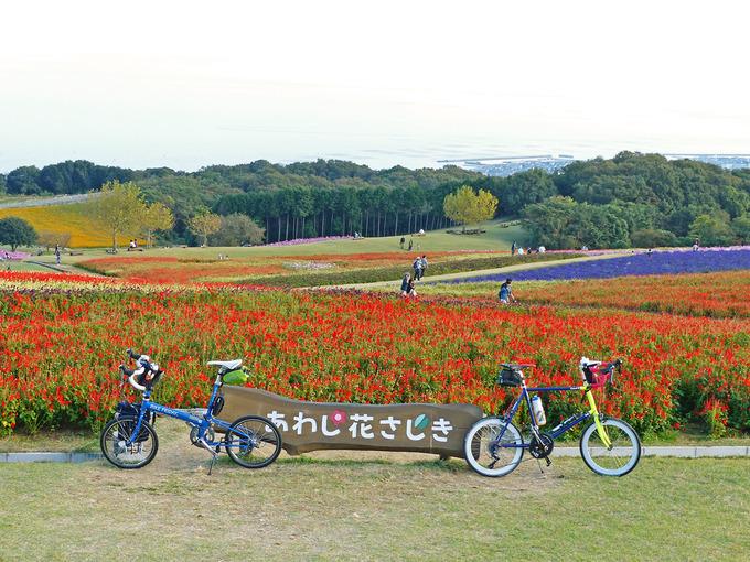 「あわじ花さじき」の花畑の写真。「花さじき」と書かれた看板の前に2台の自転車、バイクフライデーの折り畳みミニベロ「ニューワールドツーリスト」とミニベロロード「コメットR」が停められている。辺りにはたくさんの花が咲いている。