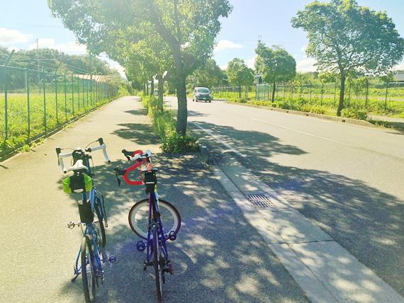 兵庫県三木市、三木工場公園内の道路脇の木陰に、2台の自転車、バイクフライデーの折り畳みミニベロ「ニューワールドツーリスト」とフジのミニベロロード「コメットR」が停められている写真。