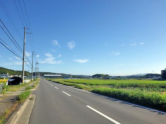 神戸市西区平野町付近の田園風景の写真。真っ直ぐに伸びる道路の両脇に、緑色の田んぼが広がっている。